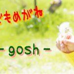 子どもメガネその⑦ ~ゴッシュ~