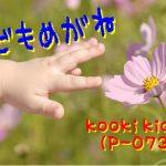 kooki kidsの新色紹介!
